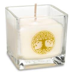Bougie parfumée à la cire de colza Arbre de vie