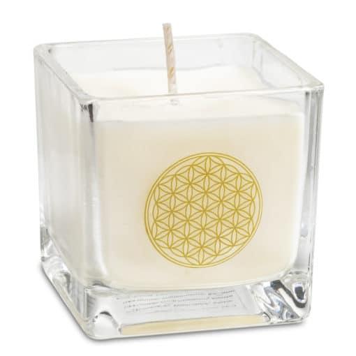 Bougie parfumée à la cire de colza Fleur de vie